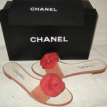 100% Authentic New Women Chanel Camilla Flower Sandal Slide Flats Us 9 C Photo