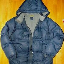 100 Used Gap Kids Boys Winter Down Coat Parka Sz 10 12 14 16 Photo