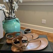 (150) Women's Coach T-Strap Thong Sandals Ankle Strap Buckle Size - 5.5us (Nib) Photo