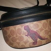 1941 Coach 75596 Rivington Belt Bag in Signature Canvas With Rexy by Sui Jianguo Photo