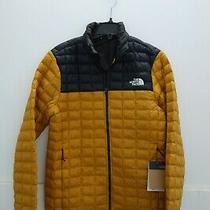 199 Nwt the North Face Thermoball Eco Jacket Gold Size Small S Photo