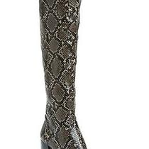 245 Jeffrey Campbell 'Dresden' Snake Print Over the Knee Boots 6 Mnew Photo