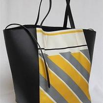 2450 New Celine Cabas  Foulard Phantom Luggage Medium Ambertote Bag Photo