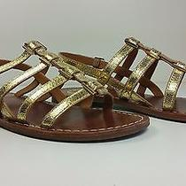 250 Sz 8.5 Tory Burch Gold Leather Flat T-Strap  Strappy Sandals Shoes  Photo