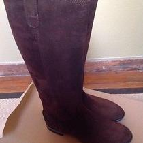 298 Madewell Archive Mahogany Suede Boots 9.5 Shoes Winter Photo