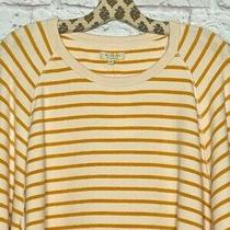 2x/3x Nordstrom Madewell Miles Striped Yellow Cotton Sweatshirt Top Pullover Photo