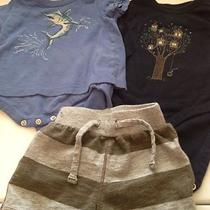 3-6 Month Boys Baby Gap 3 Pieces Photo