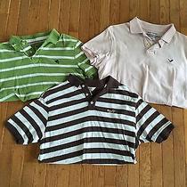 3 Mens Polo Shirts Size Large Express American Eagle - Free Us Shipping Photo