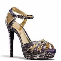 330 Ln Euc Coach Daylan Purple Gold Snake Skin Print Strappy Heels Sandals 6 Photo