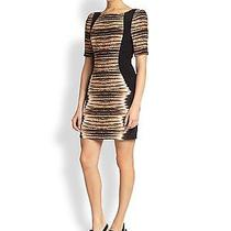 364 Nwt Sz 2 Rebecca Minkoff Animal Marco Silk Tigerprint Dress- Work Dress Photo