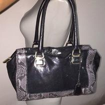 378 Cole Haan Kendra Leather Black Tote Bag Snakeskin Photo