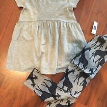 4 5 T Gap Kids 2pc Gray Short Sleeve Peplum Top Giraffe Leggings New Outfit Girl Photo