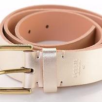 42 Fossil Solid Metallic Champagne Leather Belt Pewter D-Ring Buckle Women's L Photo