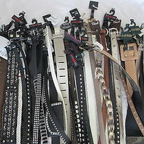 44 X  Women's Designer Belts  Fossil  Guess  Lauren and Many Others Photo