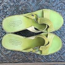 8.5 B Green Leather Wedge Women's Coach Sandals Shoes Sale 4 Children's Charity Photo