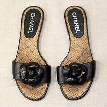 800 Chanel Black Camellia Cc Quilted Slides Mules Sandals Flats 37.5 Us7 uk4.5 Photo