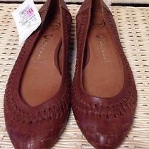 8m Jeffery Campbell Brown Woven Flats Ibiza Last Photo