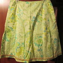 A Beautiful Skirt by Express Size 10 Photo