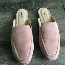 A New Day Women's Blush Mabel Microsuede Square Toe Mules Flats Size 6.5 Nwot. Photo