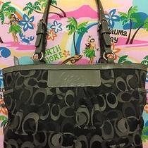 A Very Cute C Print Black and Gray Coach Handbag Photo