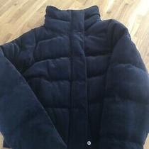 Abercrombie and Fitch Womens Black Velvet Puffer Jacket Size Xs Uk 8 Cropped Photo