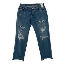 Abercrombie & Fitch Womens Ames Low Rise Slim Boyfriend Jeans Blue Sz 31/12r Nwt Photo