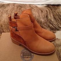 Acne Clover Boots in Chestnut Photo