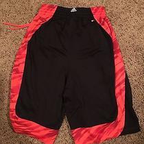 Adidas Basketball Shorts (Medium) Photo