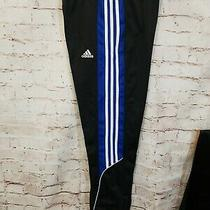 Adidas Boys L 14-16 Track Pants Black With Blue T Photo
