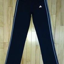 Adidas Climalite Athletic Navy Blue/ Purple Yoga Running Pants Women's Medium Photo