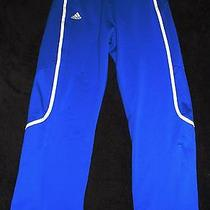 Adidas Climalite Track Sweat Pants - Navy Blue Men's Medium - Free Shipping Photo