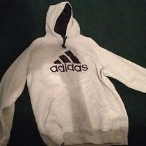 Adidas Grey Medium Hoodie Photo