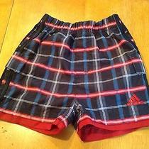 Adidas Infant Shorts 18 Months Photo