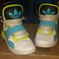 Adidas  Nike Reebok Sneakers Photo