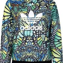 Adidas Original Butterfly Hoodie in Xs Photo