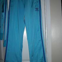 Adidas Pants Never Worn Photo