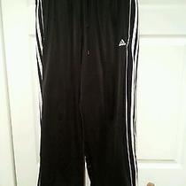 Adidas Pants Size Large   Photo