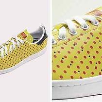 Adidas Pharrell Williams Stan Smith Fashion Sneakers Photo