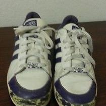 Adidas Purple Sz9 Photo