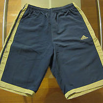 Adidas Shorts - Blue W/khaki Stripes - Like New Satisfaction Guaranteed Photo
