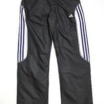 Adidas Track Pant Med Elastic Straight Leg Straight Leg 31 Photo