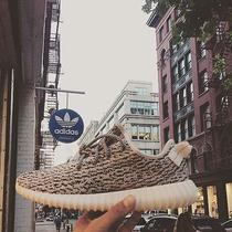 Adidas X Kanye West Yeezy Boost 350 Photo