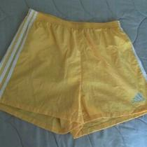 Adidas Yellow Running Shorts Size M Photo