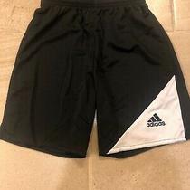 Adidas Youth Climalite Shorts Black Small Ys Photo