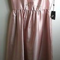 Adrianna Papell Beaded Halter Gown Blush Pink Full Skirt Princess Dress Us 14 Photo