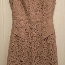 Adrianna Papell Blush Pink Lace Dress. Sleeveless. Size 6. Photo