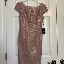 Adrianna Papell Blush Size 2 Cocktail/formal Dress Retails 179.00 Photo