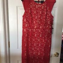 Adrianna Papell Dress Great for the Holidays. Photo