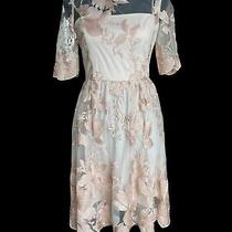 Adrianna Papell Dress Sheer Embroidered Floral Flare Blush Pink Nude Womens 4 Photo