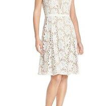 Adrianna Papell Illusion Floral Lace Fit & Flare Dress  (Size 16) Photo
